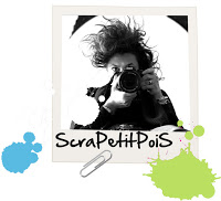 90132-scrapetitpois